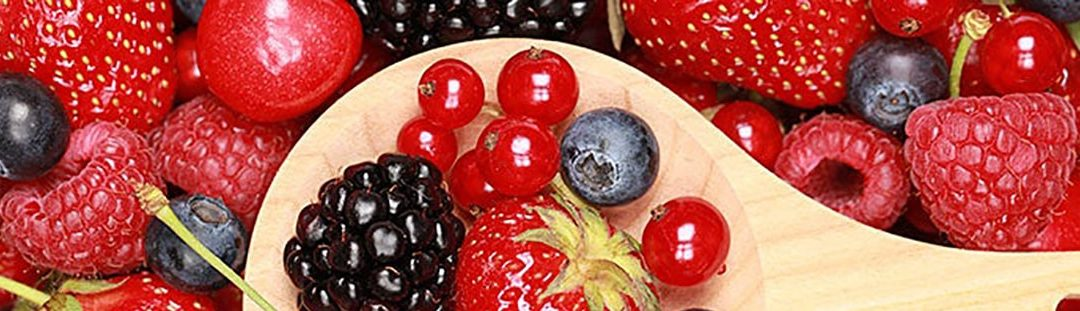Tana Africa Capital Takes Stake in Moroccan Red Fruits Business Palmagri